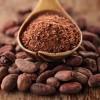 Kakao'nun Sağlığa Faydaları