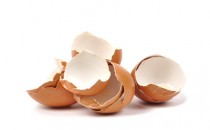 Yumurta Kabuğu Zarının Faydaları