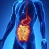 Crohn Hastalığı Nedenleri ve Belirtileri