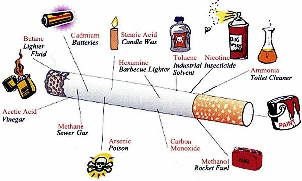 sigaranın içeriği