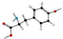 L-Tyrosine ve Vücuda Faydaları